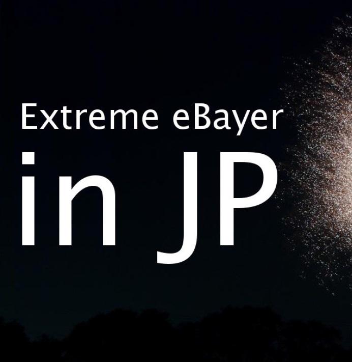 【販売終了しました】Extreme eBayer in JP ~リスク分散投資としてのeBayアカウント育成マニュアル