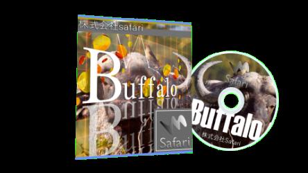 Buffalo(FX自動売買システム)